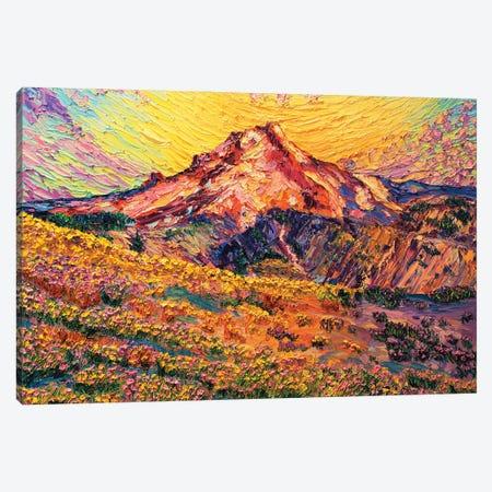 Timberline Trail Canvas Print #ERY76} by Eryn Tehan Canvas Artwork