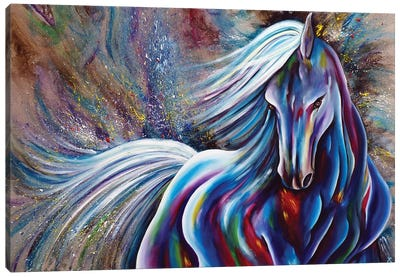 Colhorse 3 Canvas Art Print