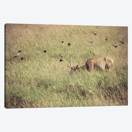 Subtle Plains Canvas Print #ESC11} by Eric Schech Canvas Wall Art