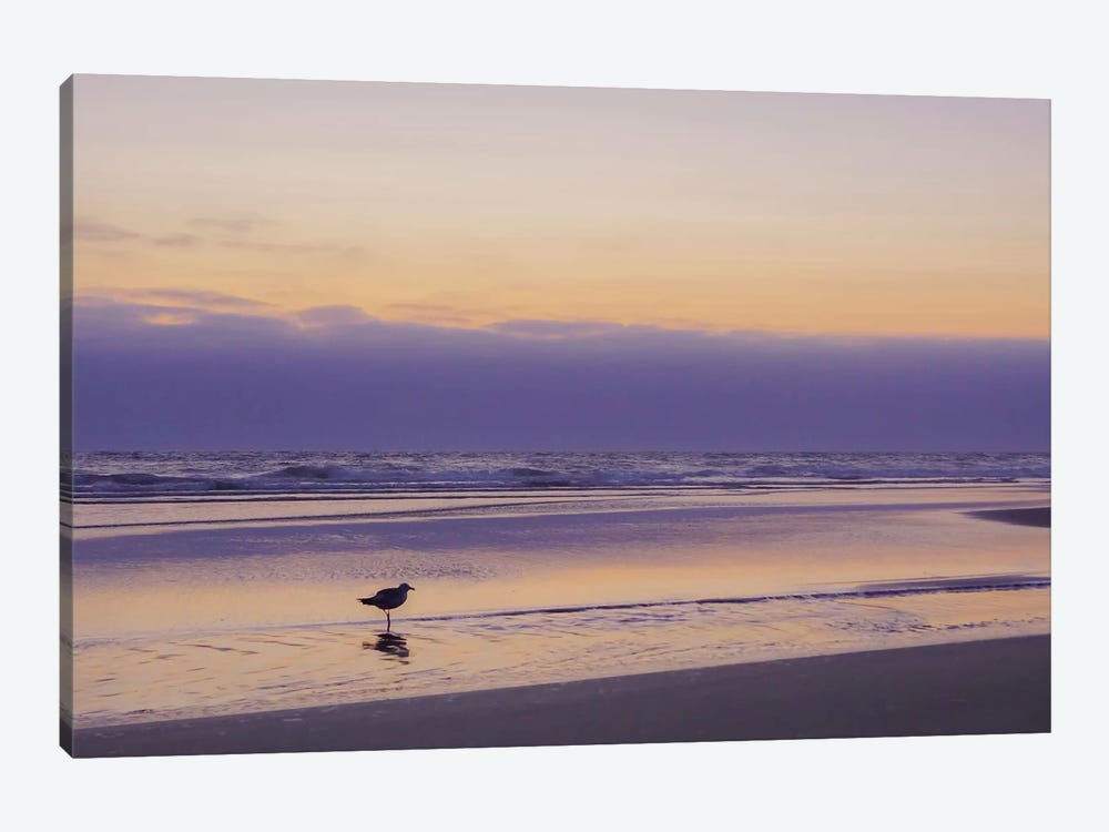 Getting Your Feet Wet by Eric Schech 1-piece Canvas Print