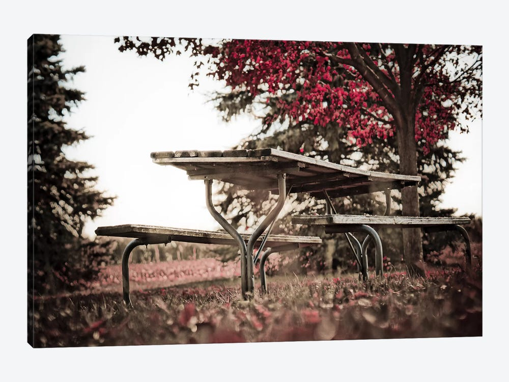 Weathered Planks by Eric Schech 1-piece Canvas Artwork