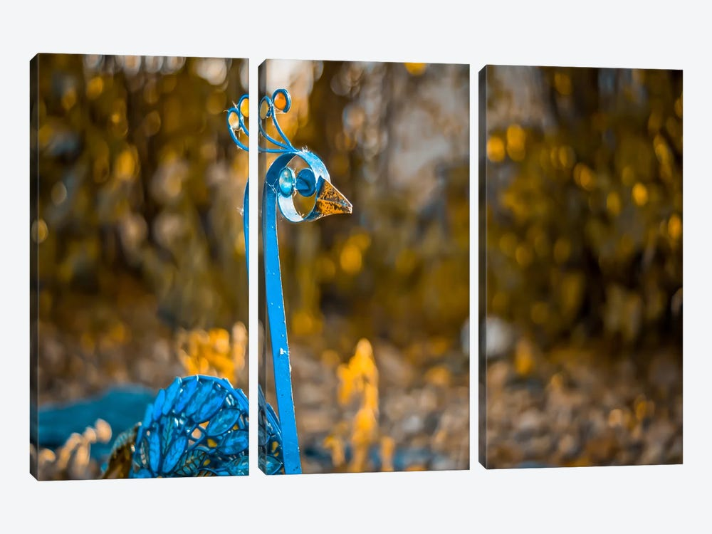 Peacock 3-piece Canvas Print