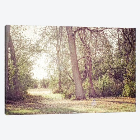 The Path Canvas Print #ESC43} by Eric Schech Canvas Art Print