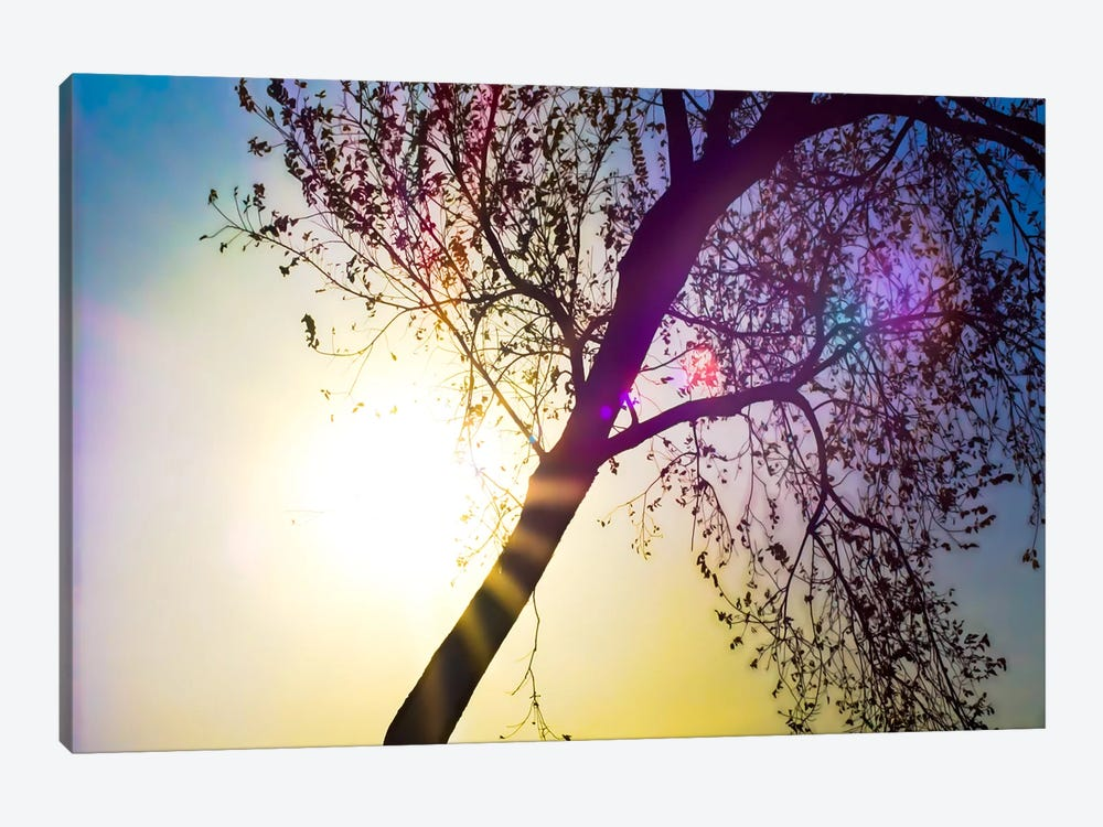 Array of Colors by Eric Schech 1-piece Canvas Art
