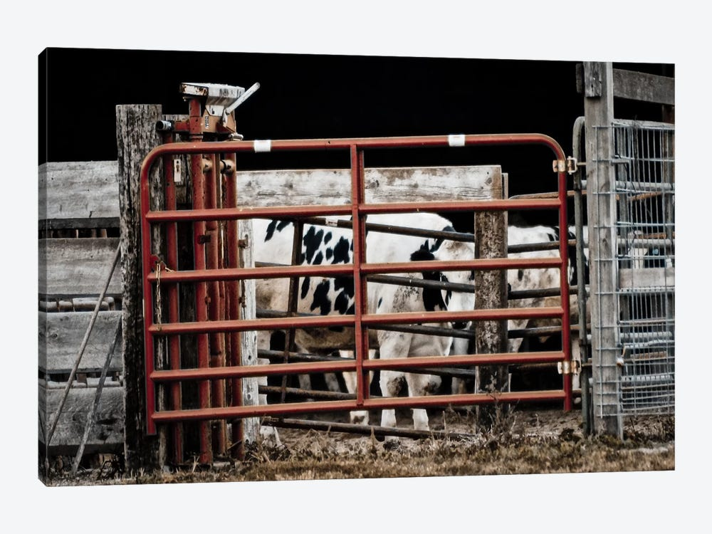 Red Gates by Eric Schech 1-piece Art Print