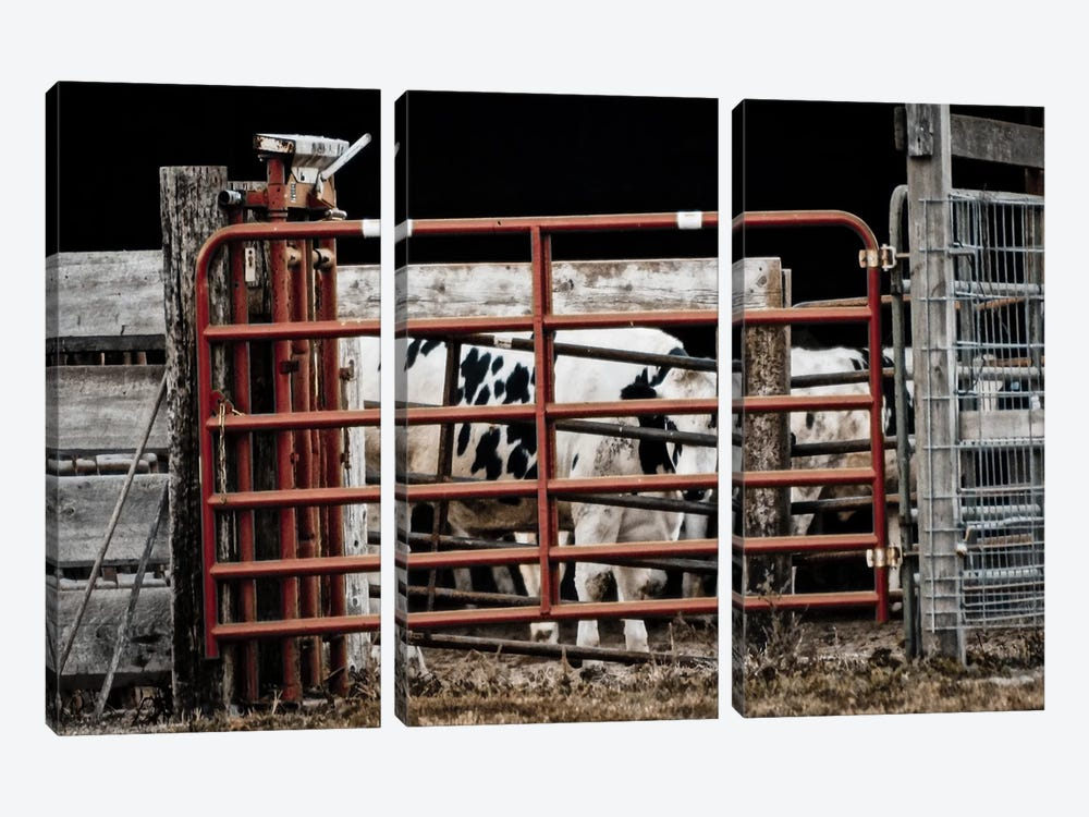 Red Gates by Eric Schech 3-piece Canvas Print
