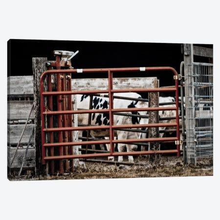 Red Gates Canvas Print #ESC45} by Eric Schech Canvas Art