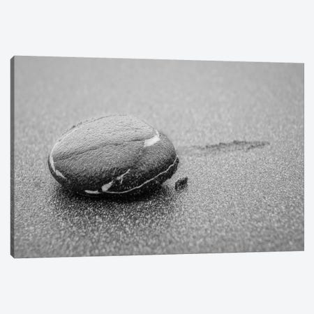 Lone Pebble Canvas Print #ESC4} by Eric Schech Canvas Artwork