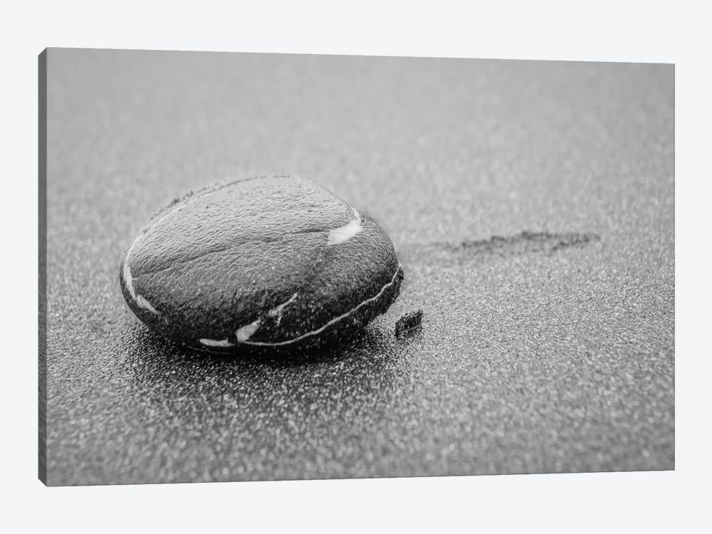 Lone Pebble by Eric Schech 1-piece Canvas Art Print
