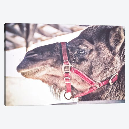 Mans Second Best Friend Canvas Print #ESC50} by Eric Schech Canvas Artwork
