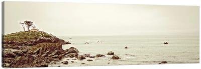 Calm Seas Canvas Art Print