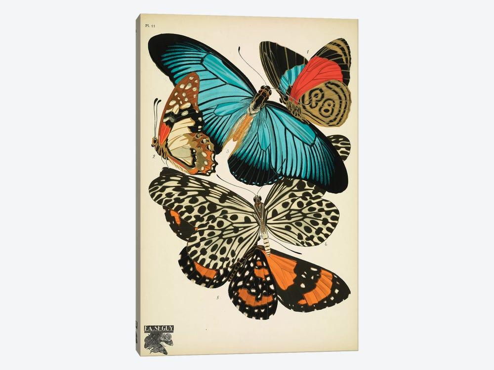 Papillons (Butterflies) XI by E.A. Séguy 1-piece Canvas Wall Art