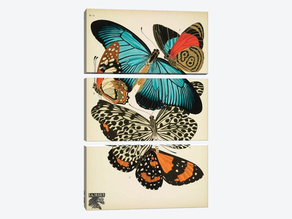 Papillons (Butterflies) XI by E.A. Séguy 3-piece Canvas Wall Art