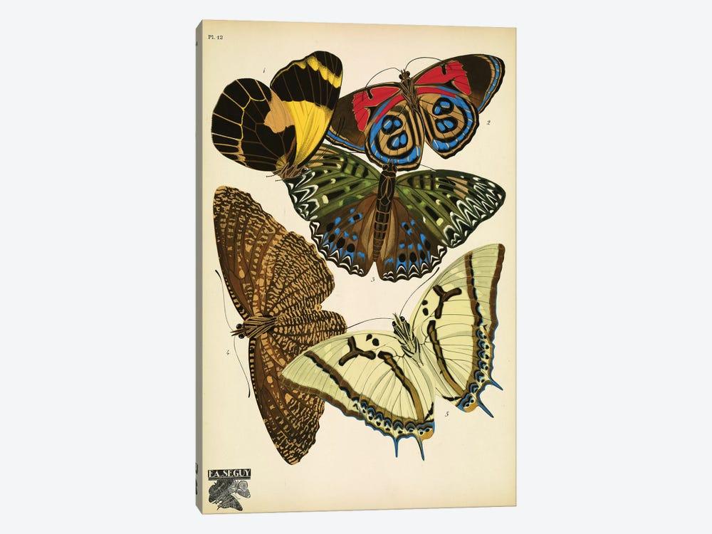 Papillons (Butterflies) XII by E.A. Séguy 1-piece Art Print