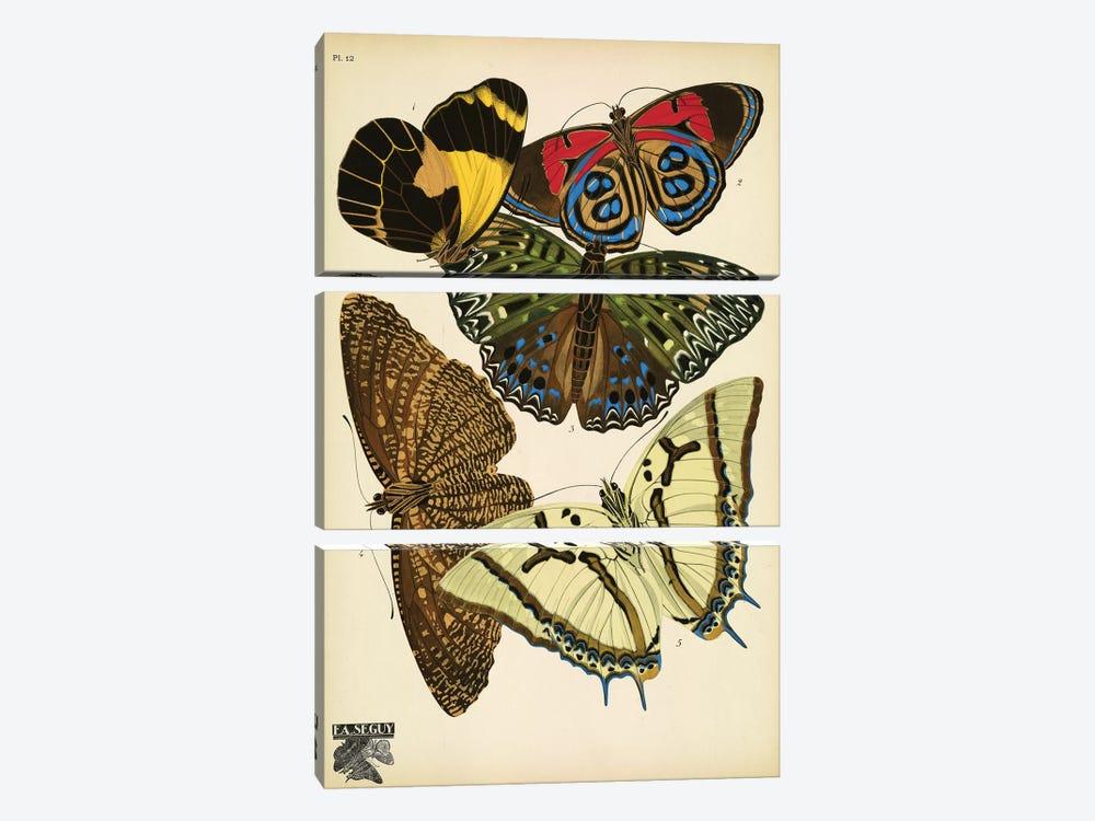 Papillons (Butterflies) XII by E.A. Séguy 3-piece Canvas Print