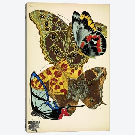 Papillons (Butterflies) XV Canvas Print #ESE15} by E.A. Séguy Canvas Print