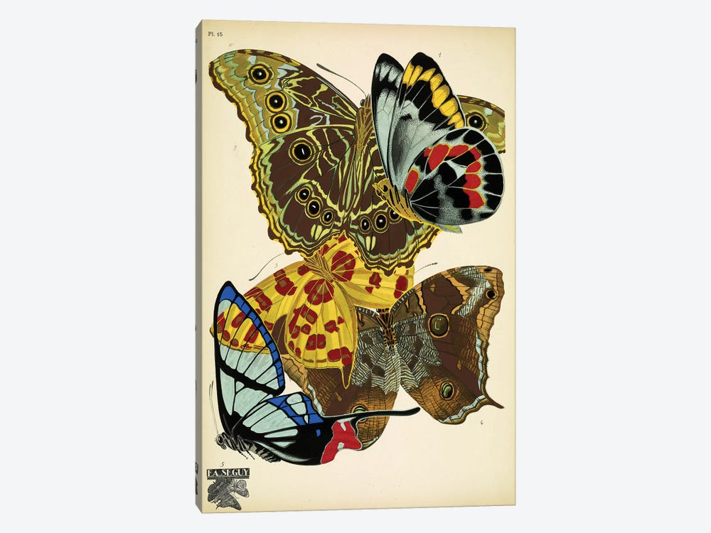 Papillons (Butterflies) XV by Eugene Seguy 1-piece Canvas Art