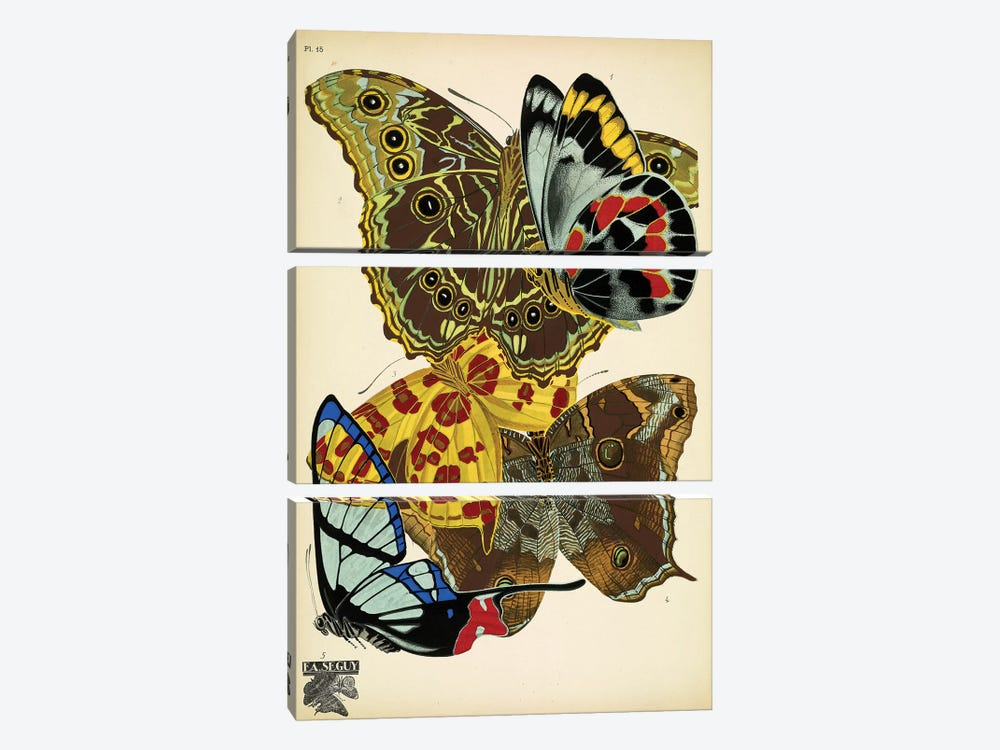 Papillons (Butterflies) XV by Eugene Seguy 3-piece Canvas Artwork