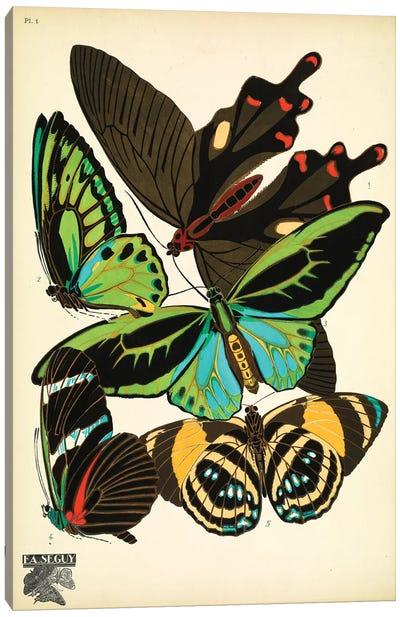 Papillons (Butterflies) I Canvas Art Print