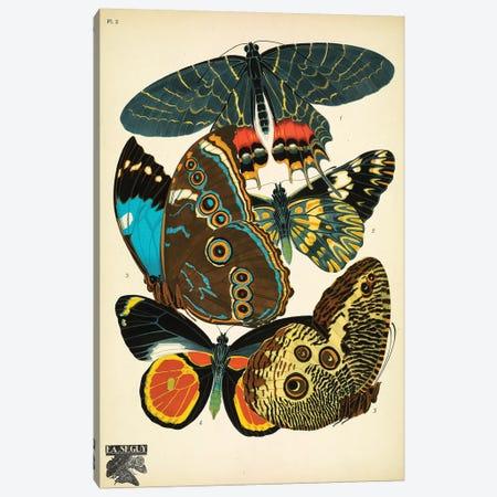 Papillons (Butterflies) II Canvas Print #ESE2} by E.A. Séguy Canvas Art Print