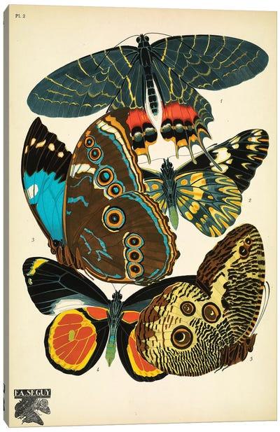 Papillons (Butterflies) II Canvas Art Print
