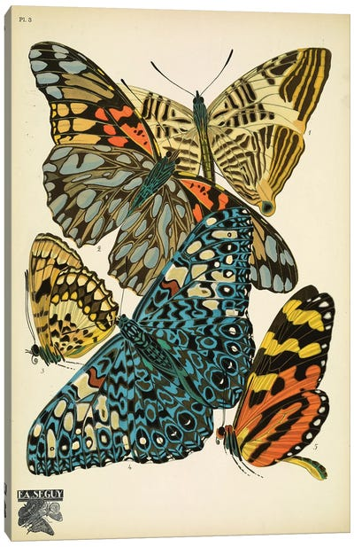 Papillons (Butterflies) III Canvas Art Print