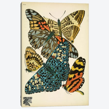 Papillons (Butterflies) III 3-Piece Canvas #ESE3} by E.A. Séguy Canvas Print