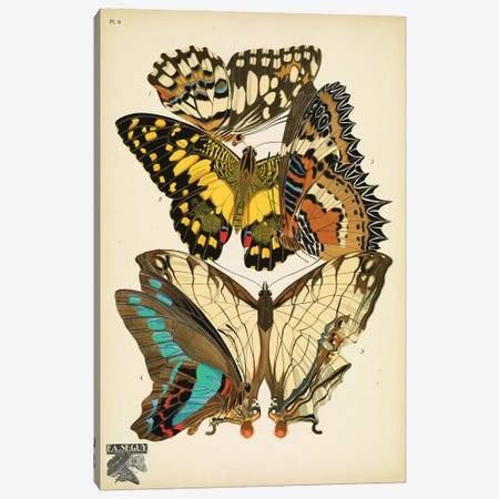 Papillons (Butterflies) IX 3-Piece Canvas #ESE5} by E.A. Séguy Canvas Artwork