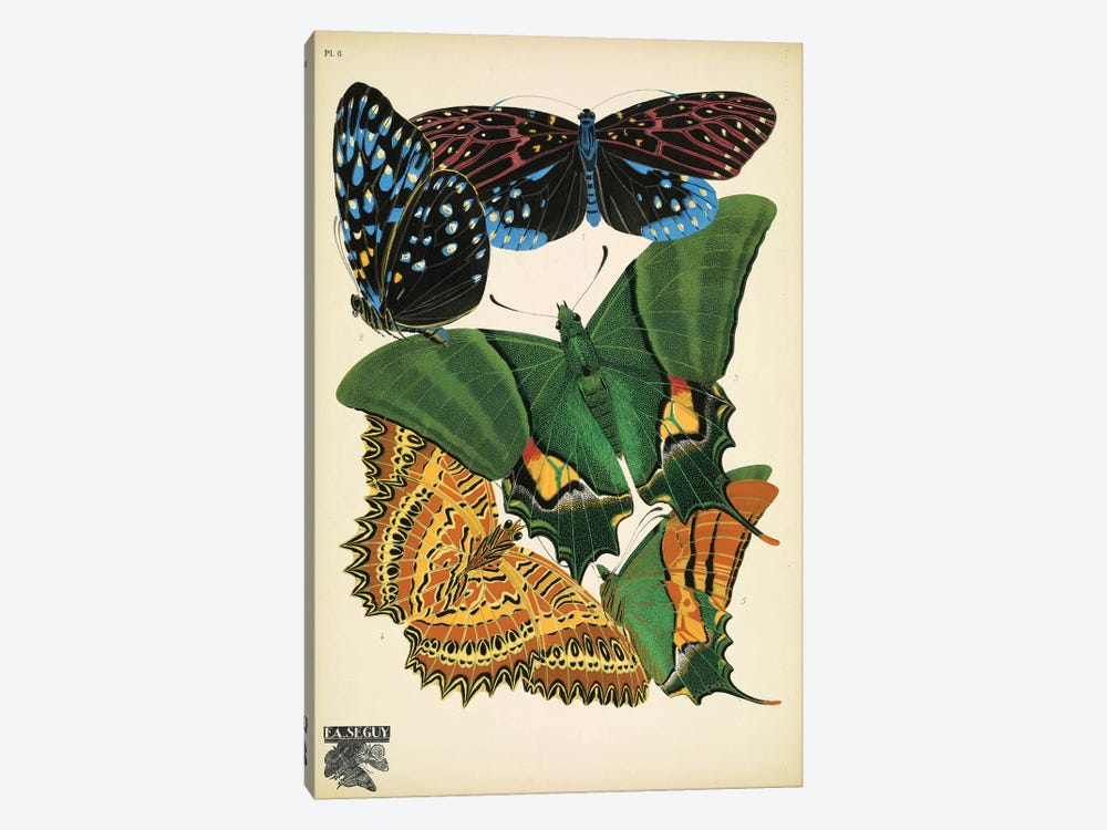 Papillons (Butterflies) VI by Eugene Seguy 1-piece Canvas Art