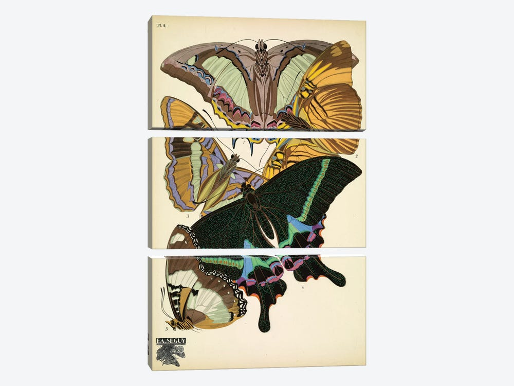 Papillons (Butterflies) VIII by Eugène Séguy 3-piece Canvas Wall Art