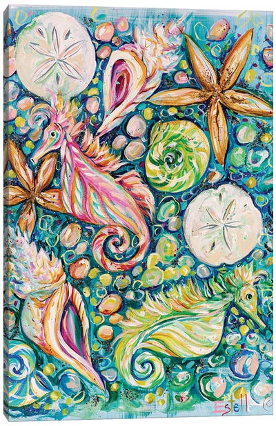 Conchology Canvas Art Print