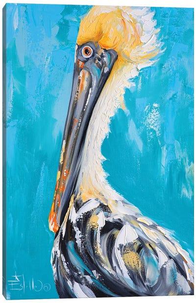 Posh Pelican Canvas Art Print