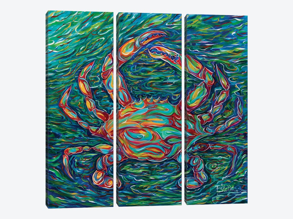 Crab by Estelle Grengs 3-piece Canvas Art Print
