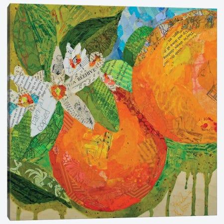 Florida Oranges Canvas Print #ESH17} by Elizabeth St. Hilaire Canvas Art