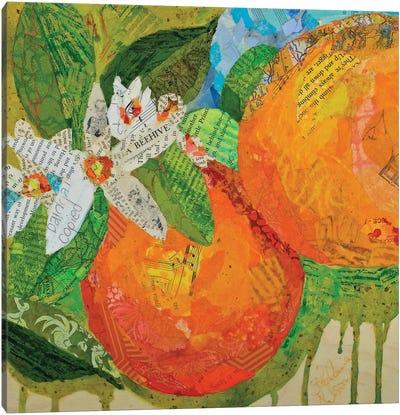 Florida Oranges Canvas Art Print