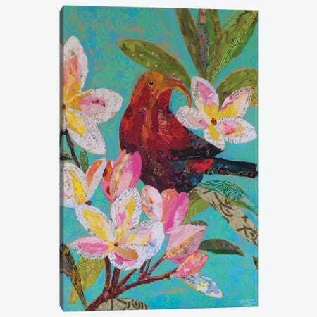 Hawaiian Bird II Canvas Print #ESH24} by Elizabeth St. Hilaire Art Print