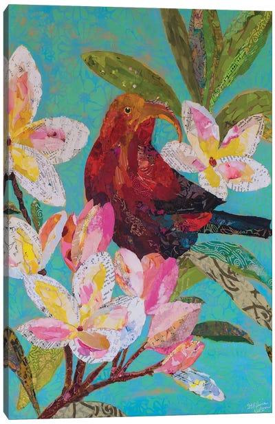 Hawaiian Bird II Canvas Art Print