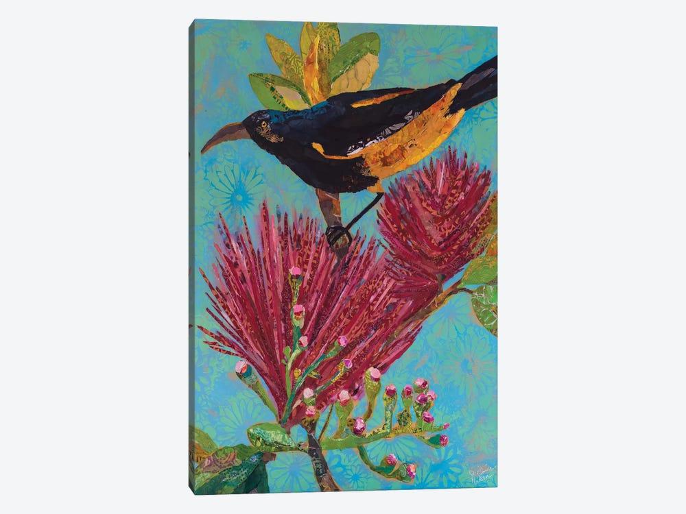 Hawaiian Bird III by Elizabeth St. Hilaire 1-piece Canvas Wall Art