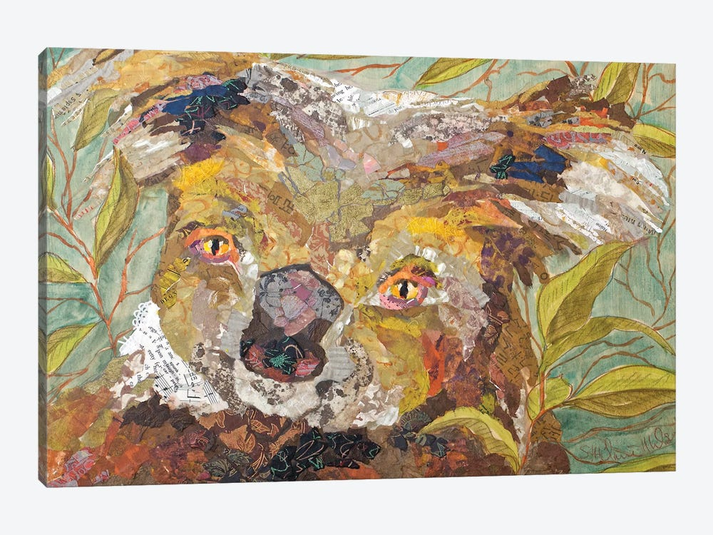 Koala Collage II by Elizabeth St. Hilaire 1-piece Canvas Artwork