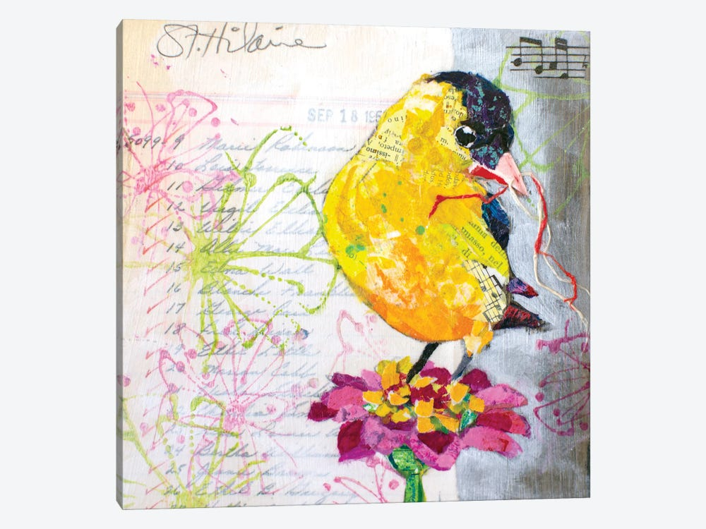 Happy Bird IV by Elizabeth St. Hilaire 1-piece Canvas Art