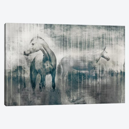 Grey Serenade Canvas Print #ESK100} by Edward Selkirk Canvas Artwork