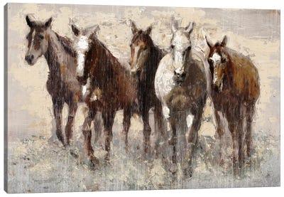 Harras Canvas Art Print