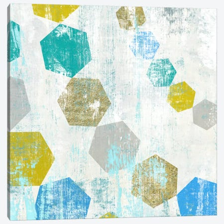 Hexagon III Canvas Print #ESK110} by Edward Selkirk Canvas Print