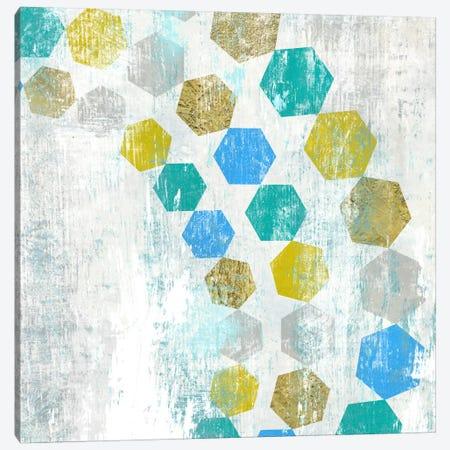 Hexagon IV Canvas Print #ESK111} by Edward Selkirk Canvas Art Print