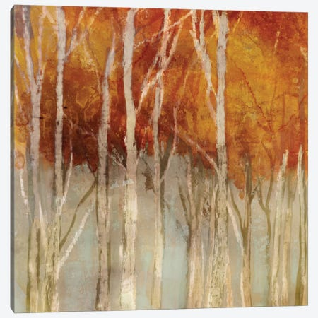 Belgium Forest I Canvas Print #ESK11} by Edward Selkirk Canvas Art
