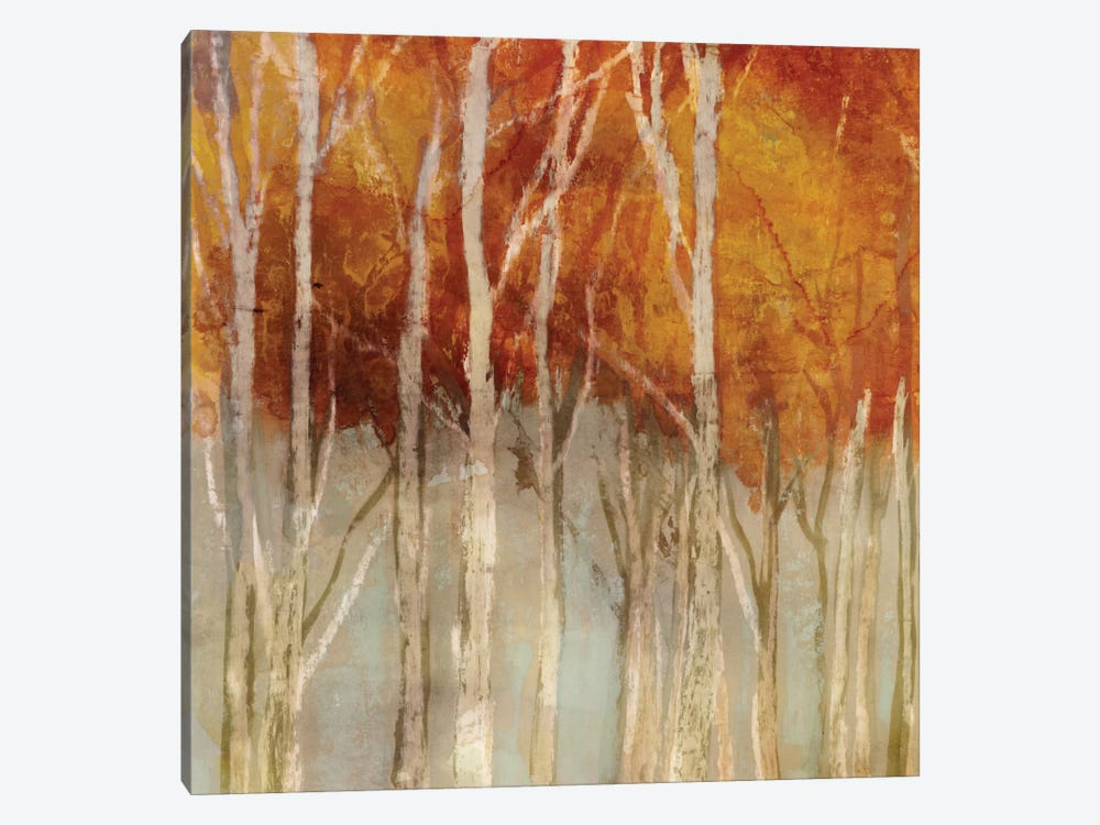 Belgium Forest I by Edward Selkirk 1-piece Canvas Art Print