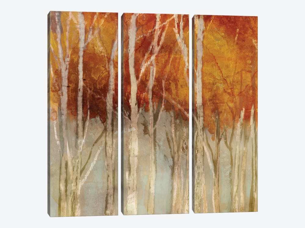 Belgium Forest I by Edward Selkirk 3-piece Canvas Print