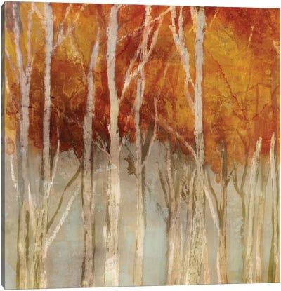 Belgium Forest I Canvas Art Print