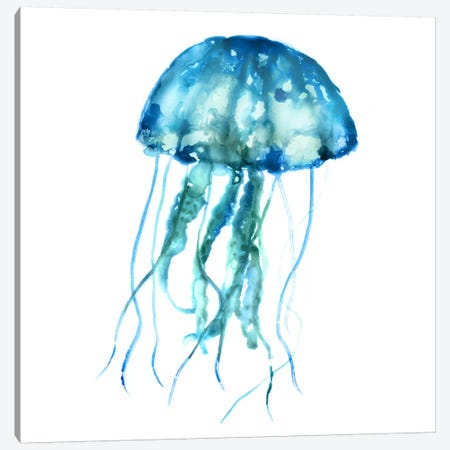 Jellyfish Canvas Print #ESK129} by Edward Selkirk Canvas Wall Art