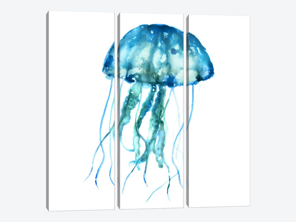 Jellyfish by Edward Selkirk 3-piece Canvas Art